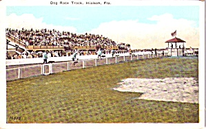 Hialeah Fl Dog Race Track P38867