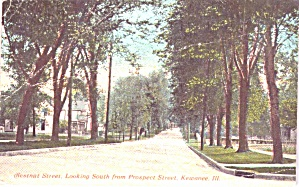 Kewanee Il Chestnut St Looking South From Prospect P38924