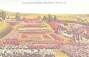 Hershey PA Hershey Rose Garden Terraces p39434 (Image1)