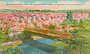 Reading PA Stoudt Ferry Bridgeacross Schuylkill River p39621 (Image1)