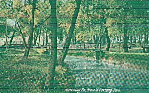Harrisburg PA Paxtany Park Grove p39675 (Image1)
