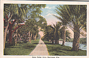 Aytona Florida Dte Palm Ave On An E C Kropp Sample Post Card P39889