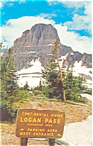 Canadian Rockies Glacier Logan Pass MT Postcard p3999 (Image1)