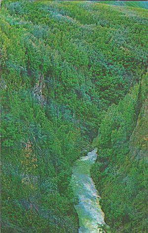 Anchorage Palmer Highway Alaska Eklutna Gorge Postcard P40328 (Image1)
