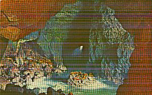Near Florence Oregon Sea Lion Cave p40438 (Image1)