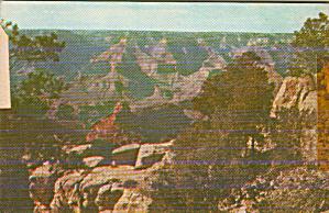 Grand Canyon Arizona Near El Tovar Hotel Postcard P40761 (Image1)