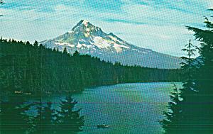 Mt Hood and Lost Lake Oregon Ptcard P40769 (Image1)