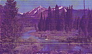 Colorado River Valley  Colorado Postcard P40969 (Image1)