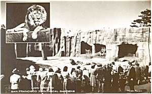 Lion Grotto San Francisco  Pcard Real Photo (Image1)