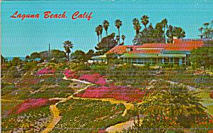 Laguna Beach California l Heisler Park Sloping Banks P41129 (Image1)