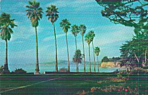 Santa Barbara Cailfornia Channel Drive Postcard P41135 (Image1)