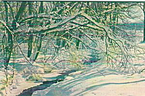 Winter Wonderland Snow Scene p41200 (Image1)