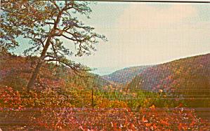 Delaware River Valley From Bushkill Falls Poconos P41245 (Image1)