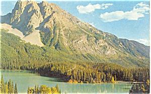 Banff National Park Alberta Canada Postcard (Image1)