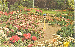 Victoria BC Canada Butchart Gardens Postcard p4145 (Image1)
