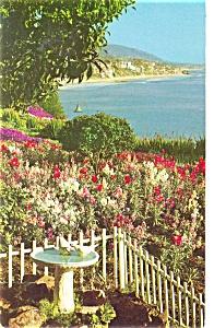 Laguna Beach CA Postcard p4347 (Image1)