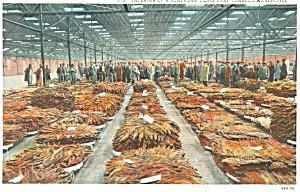 Southern Tobacco Warehouse K T Postcard p4402 (Image1)