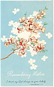Sunay School Postcard p4517 1960 (Image1)