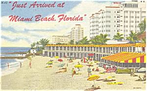 Miami Beach Florida Postcard p5105 (Image1)