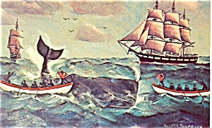 Whaling Harpooner From Painting Postcard