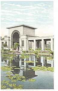 Chicago IL Lily Pond Douglas Park Postcard p5388 (Image1)