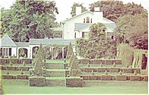 Monkton MD Topiary Gardens Postcard p5691 (Image1)