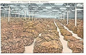 Tobacco Warehouse in Kentucky Postcard  p5807 1927 (Image1)