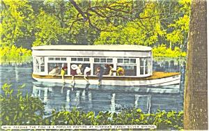 Silver Springs Ocala Florida Linen Postcard p5916 (Image1)