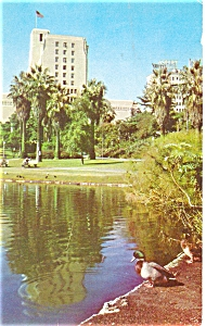 Los Angeles CA Macarthur Park Postcard p5953 (Image1)