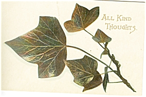 All Kind Thoughts Vintage Postcard p5975 (Image1)