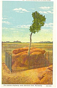 Sherman Hill Wyoming Tree Growing from Rock Postcard p5988 (Image1)