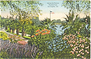 Westlake Park Los Angeles CA Postcard p6114 (Image1)