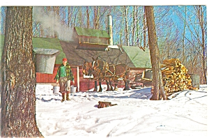 Maple Sugar Time In Vermont Postcard P6342