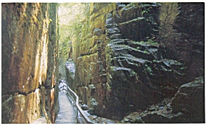 The Flume White Mountains NH Postcard p6697 (Image1)