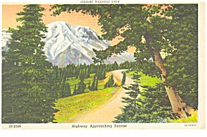 Rainier National Park Highway Scene Postcard (Image1)