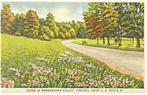 Shenandoah Valley Virginia Scene Postcard p6901 (Image1)