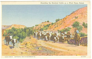 West Texas, Cattle Roundup (Image1)