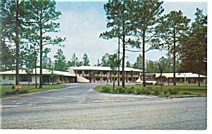 Silver Springs FL Monterey Motel Postcard p7143 (Image1)