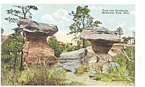 Mushroom Park CO Toad and Toadstools Postcard p7174 (Image1)