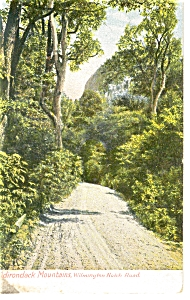 Adirondack Mountains NY Postcard p7254 (Image1)