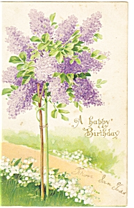 A Happy Birthday Postcard p7506 Divided Back 1907 (Image1)