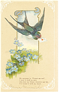 Swallow With A Message Postcard Divided Back P7596