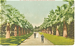Eastlake Park, Los Angeles, CA  Postcard (Image1)