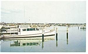 Crab Boats Crisfield  Maryland Postcard p7661 (Image1)