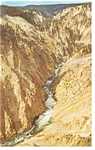 Lower Grand Canyon Yellowstone National Park WY Postcard p7803 (Image1)