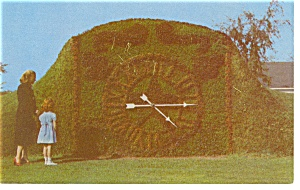 Greenfield Village MI Floral Clock Postcard p7970 (Image1)