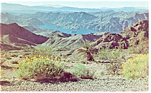Lake Mead, NV, Virgin Canyon Postcard (Image1)