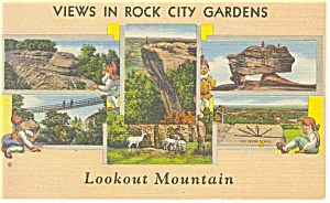 Views in Rock City Gardens Linen Postcard p8037 (Image1)