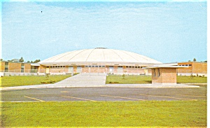 Hattiesburg  MS Reed Green Coliseum  Postcard p8054 (Image1)