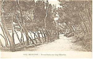 Menton France Sous bois an Cap Martin Postcard p8415 (Image1)